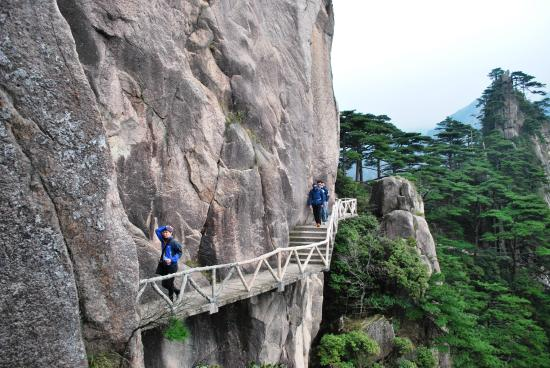 Mt Huangshan Tours