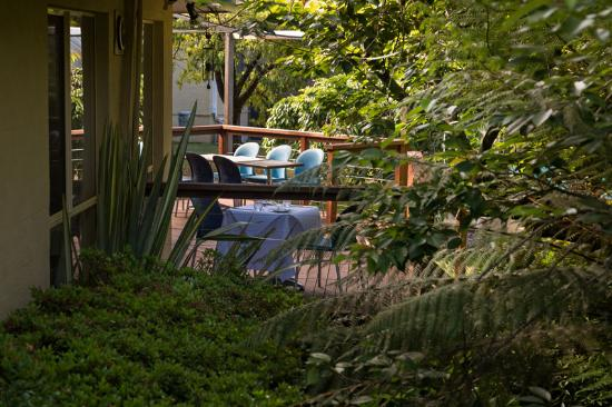 Comfort Inn Redleaf Resort: Gardens