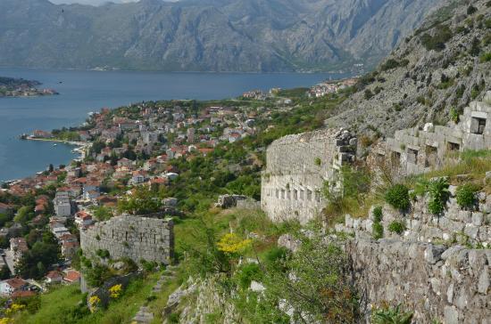 5 card montenegro kotor things