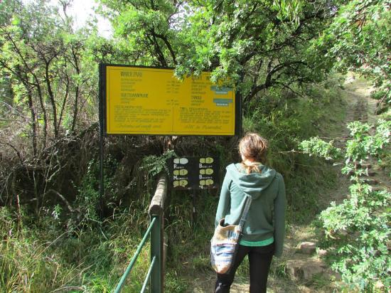Golden Gate Hotel: many hikes on offer close to the hotel