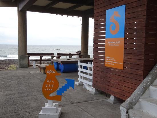 Seahorse House: 入口