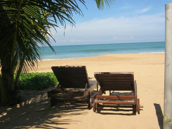 Arcade Beach Hotel Bewertungen Fotos Preisvergleich Induruwa