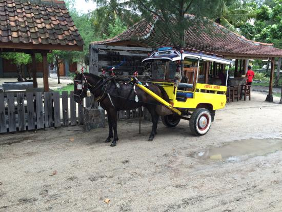 Eden Cottages: Taxi anyone?