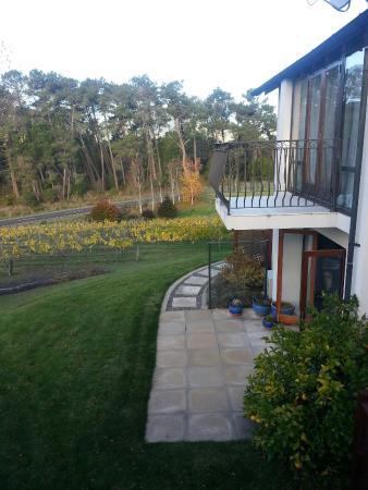 Rive Gauche B&B Lodge : Garden