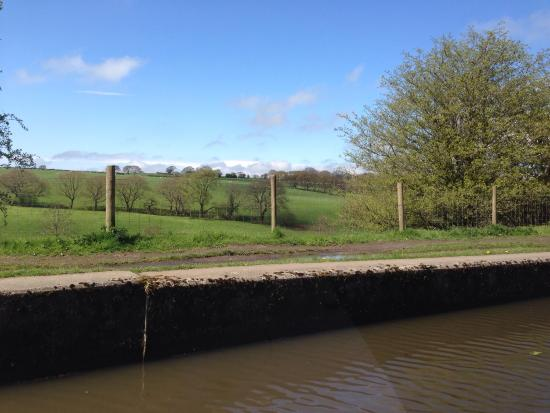 Canal Boat Cruises of Riley Green: Lancashire countryside