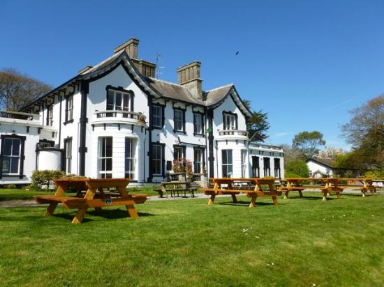 Haven Hotel Dunmore East: The haven and grounds
