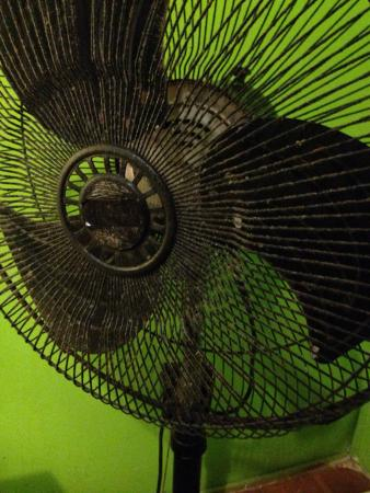 Kaminu Backpackers Hostel: didn't turn this fan on... too scared of what we might inhale