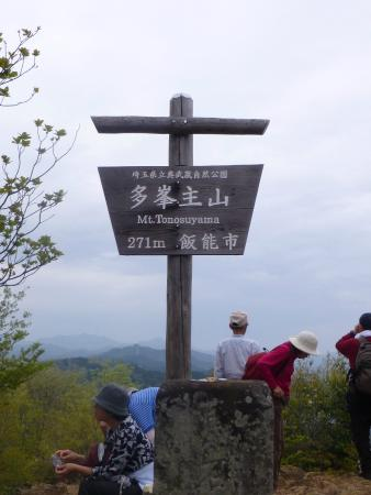 Tounosu Mountain