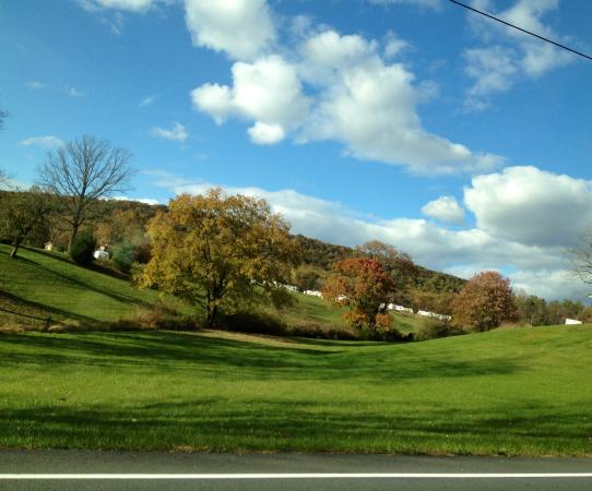 "Twin Grove RV Resort & Cottages: Countryside, where campsites are ""nestled"""