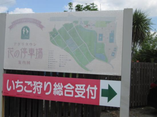 Sano Tourist Farm Agritown