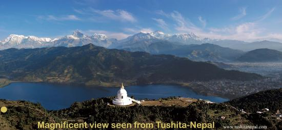 Tushita Nepal