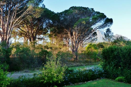 22 Die Laan Self-Catering Accommodation: view from the lounge, overlooking the reserve and the mountain