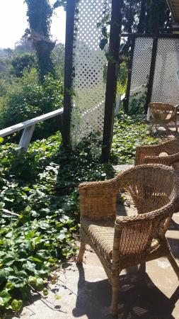 Native Hotel: private outdoor patio - the less private side