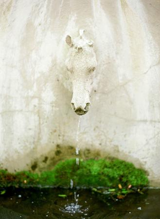 The Red Fox Inn & Tavern: Fountain in the Courtyard