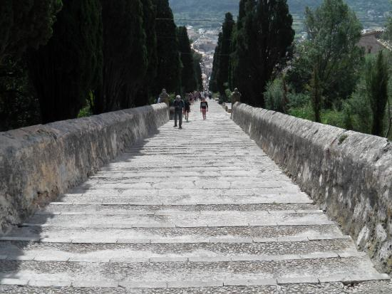 Top of the steps - Picture of The 365 Calvari Steps, Pollenca - TripAdvisor