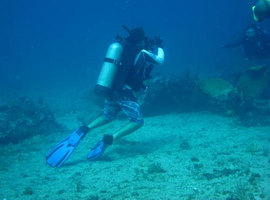 Simpson Bay, St Marteen/St. Martin: My Personal Dive Master