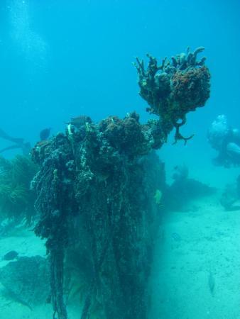 Simpson Bay, St. Maarten/St. Martin: More Interesting Formations