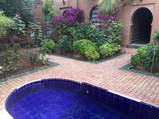 Le Sauvage Noble : The plunge pool
