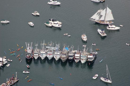 Gig Harbor, WA: Boats in the harbor