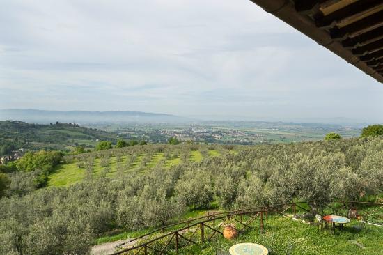 Rocca Sant'Angelo, Italy: Vista verso la pianura