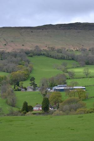 White Haywood Farm B&B: White Haywood Farm within rolling hills, grazing sheep and stone cottages at the foot of the Bla