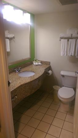 Holiday Inn Express Atlanta NE I-85 Clairmont: bathroom king room