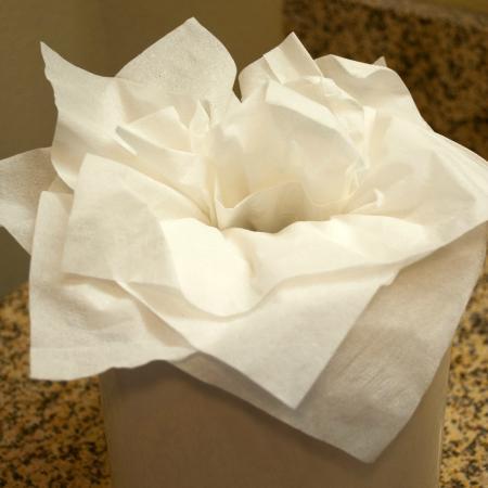 Hampton Inn & Suites Mansfield-South @ I-71: Artfully presented Kleenex