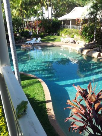 Sovereign Resort Hotel Cooktown: Part of the pool with a green tree frog visiting us