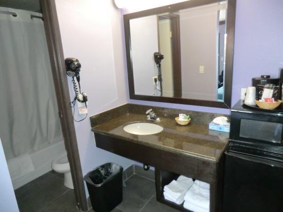 Hawthorne Plaza Inn: Bath