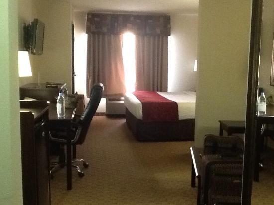 Comfort Suites Jackson/Cape Girardeau : Good clean and quiet sitting and sleeping areas.