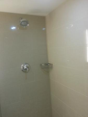 Sheraton Parkway Toronto North: Large Shower