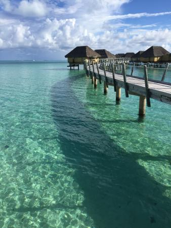 Le Taha'a Island Resort & Spa : photo5.jpg