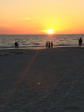 Bird's Nest Apts: Sunset at the beach.