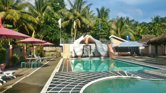 Bariw Mountain Resort: pool are and the slide. :)