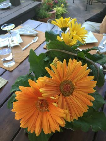 CasaLana Gourmet Retreats: photo2.jpg