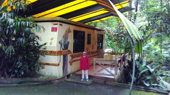Taman Safari Lodge, Puncak - Compare Deals