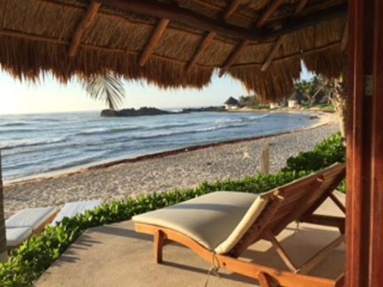 Patio Of Beachfront Cabana Picture Of El Pez Colibri Boutique