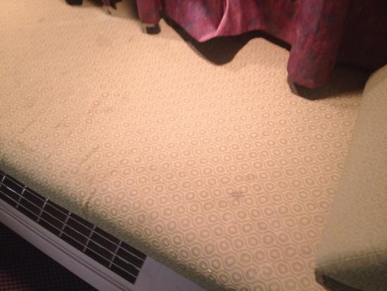 Regency Inn & Suites: photo2.jpg