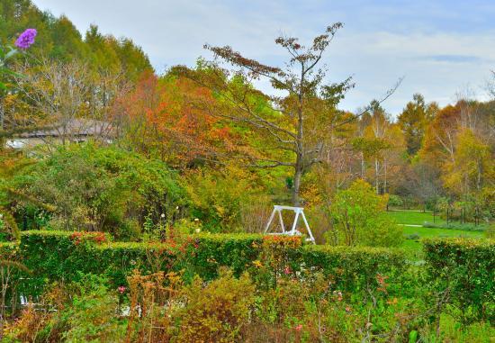 Barakura English Garden