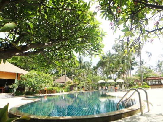 Chaweng Buri Resort : Swimming Pool