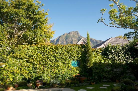 Jaqui's Garden Guesthouse: Aussicht vom Garten