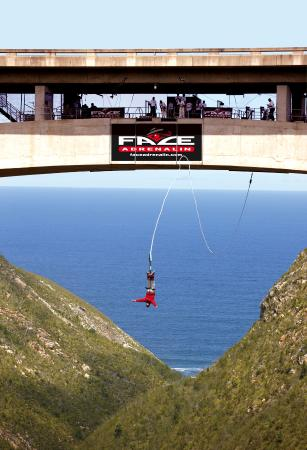 Tsitsikamma National Park, Sydafrika: Face Adrenalin Bungy