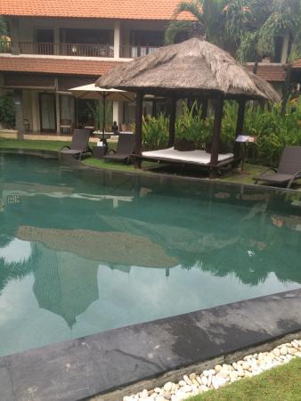 Villa Diana Bali: Swimming pool