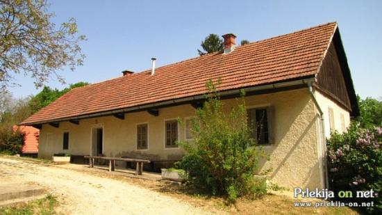 Miklošič House
