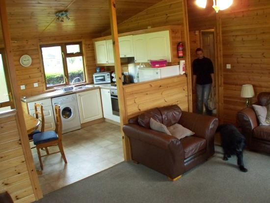 The Poplars - Rooms & Cottages: living room and kitchen, lovely open plan layout