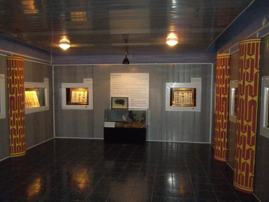 Calarasi, Rumænien: Lower Danube Museum