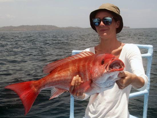 Buena Vista Sportfishing: Red Snapper