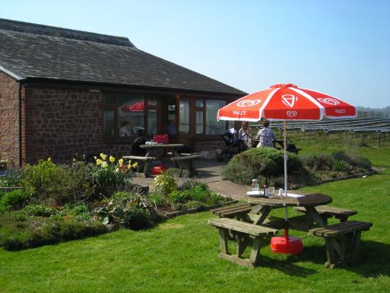 Halberton Court Farm Shop  Tea Room