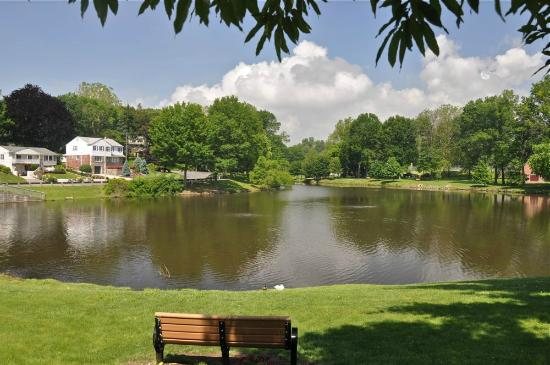 """SpringHill Suites Philadelphia Airport/Ridley Park: """"The Lake"""" in Ridley Park"""