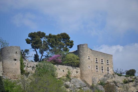 La Provence de Claire Tours